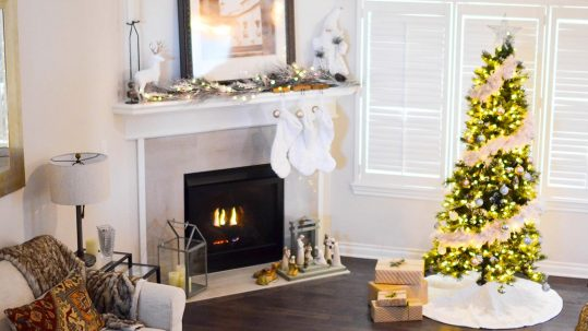 christmas domestic cleaner in angus